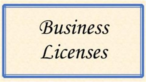 Business Licence (Involve LGA and BRELA depending on the license Type)